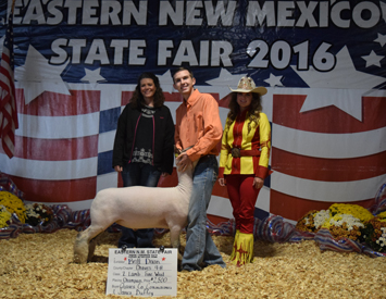 High Noon Feeds 2016 State Winners
